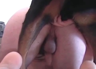 Sensual hunter enjoys a dirty anal action